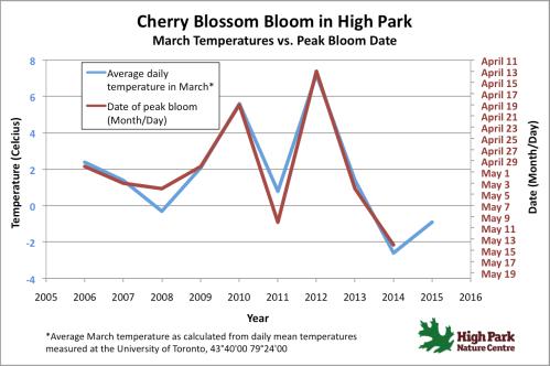 Peak-Bloom-predictions-2015